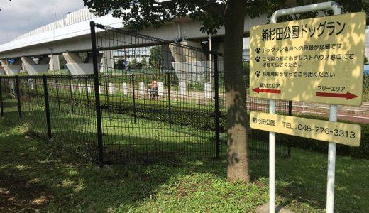 新杉田公園ドッグラン情報