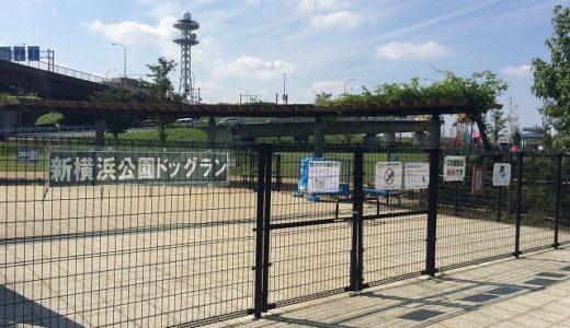新横浜公園ドッグラン情報