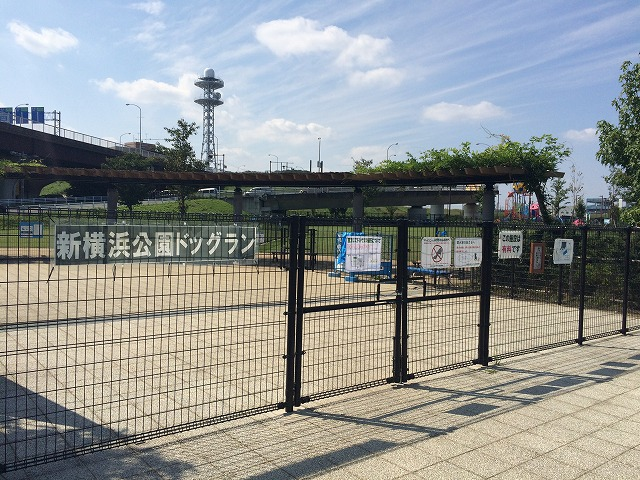ドッグラン 新横浜