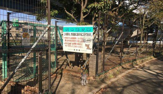 海の公園「犬の遊び場」情報